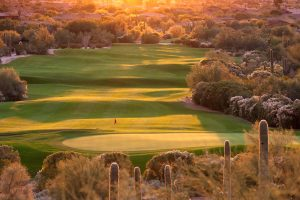 Beautiful Backlit Desert Golf Course in Phoenix Arizona